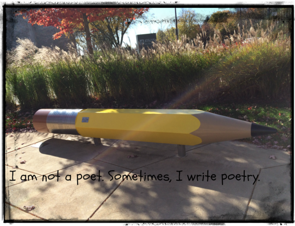 I am not a Poet