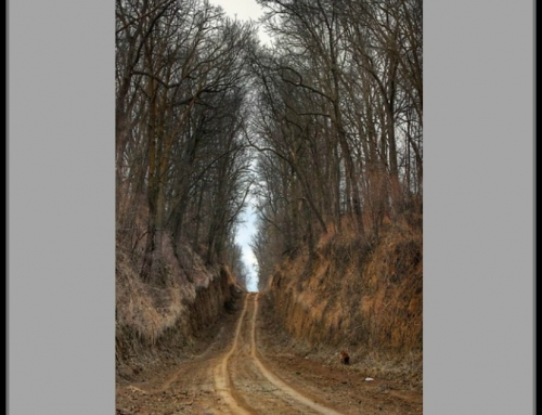 Passageways